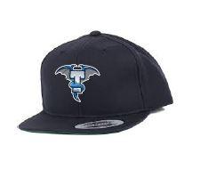 Kšiltovka (alt logo) - modrá