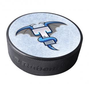 Puk HC BAK Trutnov - alternativní logo